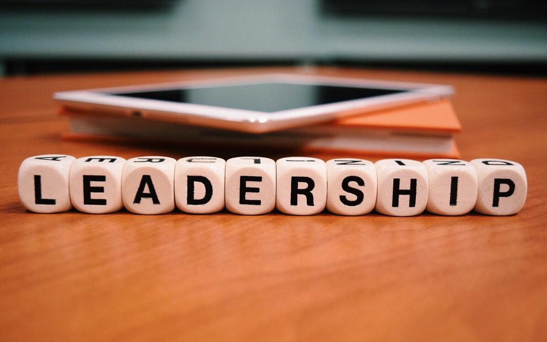 Great MLM Leader Qualities | Do You Have Them?